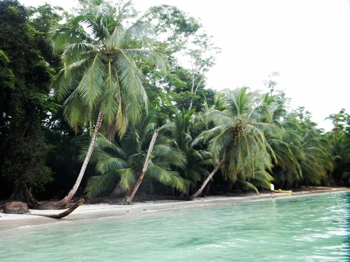 Datieren Kakao-Strand florida